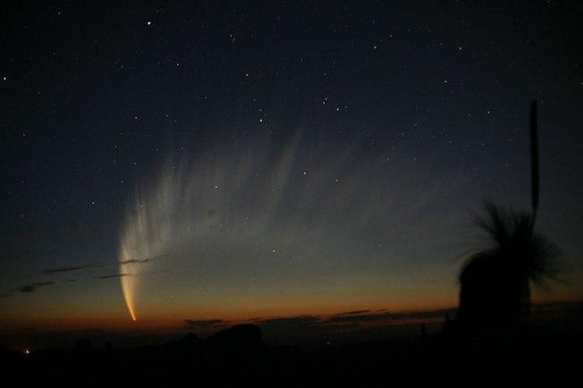 comet_mcnaught
