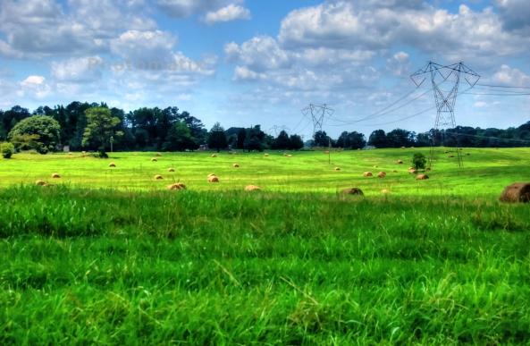 cochrane field 2