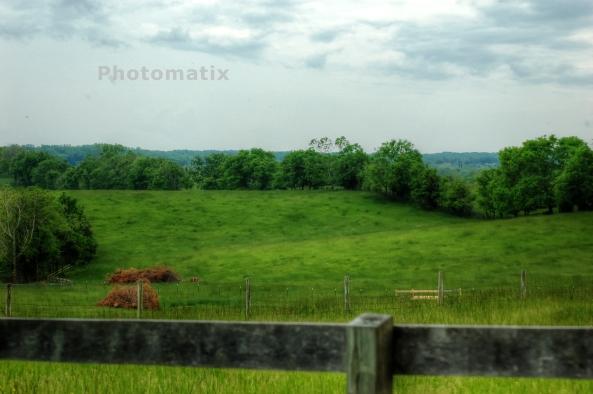 goochland landscape 2    05-11-2013