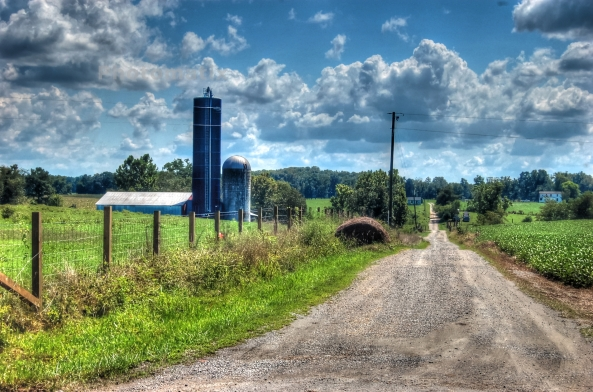 Farm in Hanover County 8242013