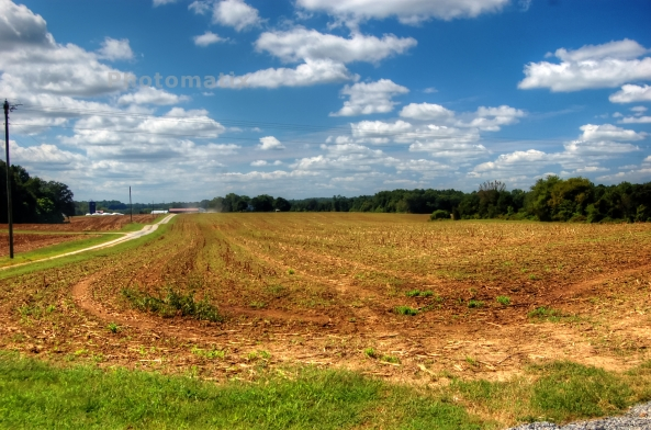 hanover field 1 972013