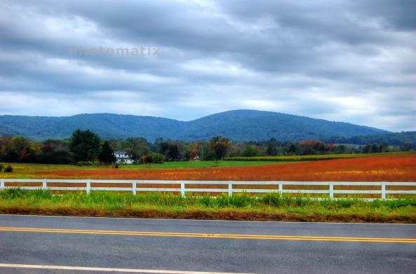 mountains 1 10192013