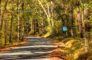 county road 10-26-2014
