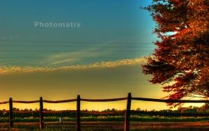 sunset 10-17-2014